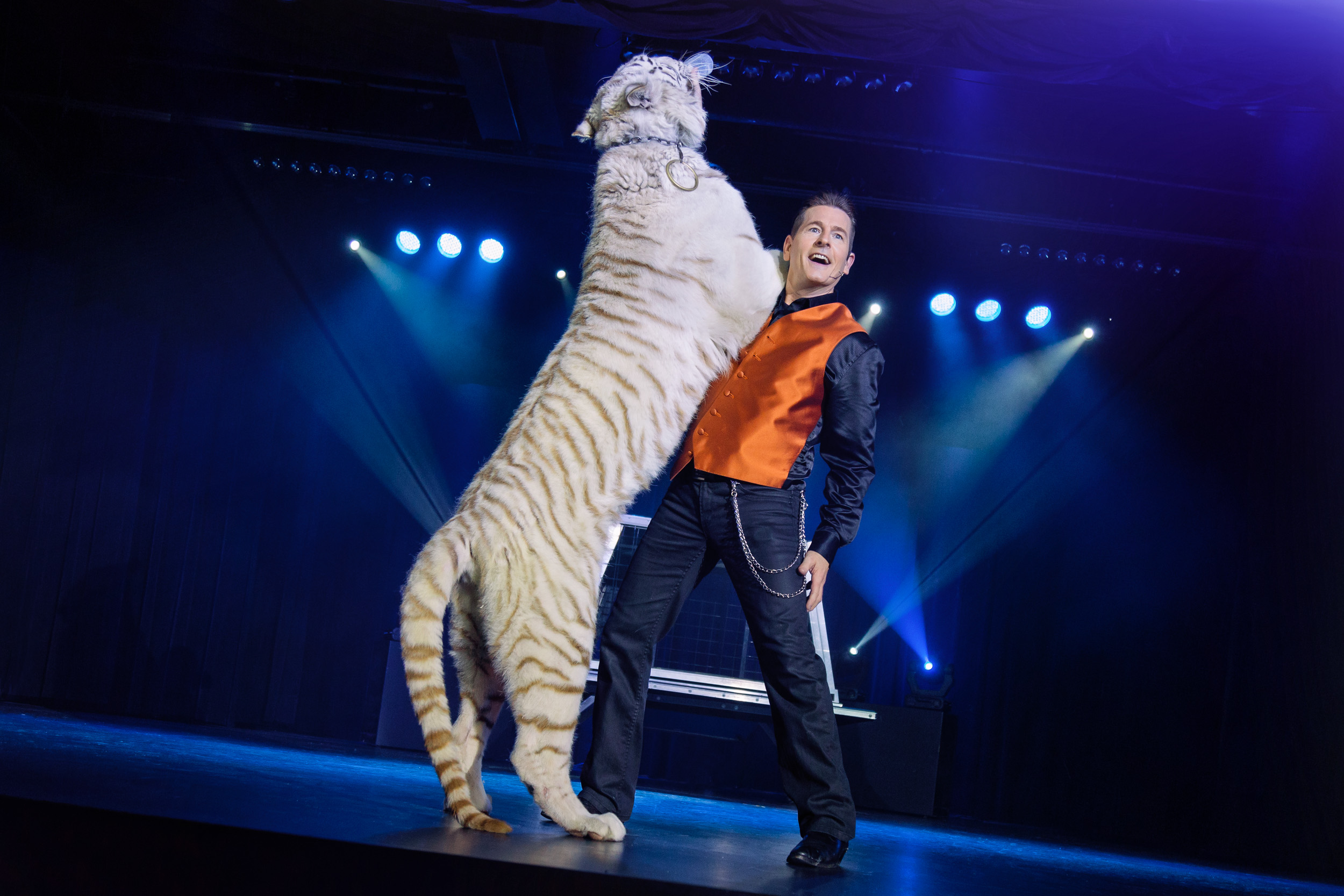 Greg frewin show niagara falls 3 girls white tiger blue - Show me a picture of the tiger ...